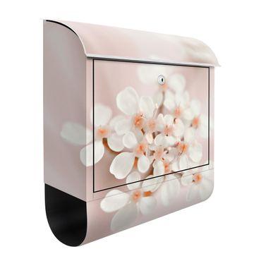 Cassetta postale - Piccoli fiori in luce rosata