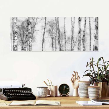 Quadro in vetro - Bosco di betulle mistico in bianco e nero
