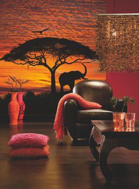 Carta da parati - National Geographic tramonto africano