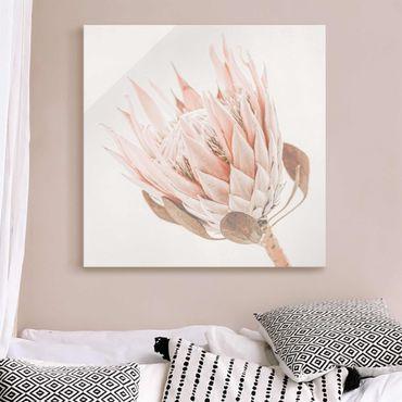 Quadro in vetro - Protea regina dei fiori