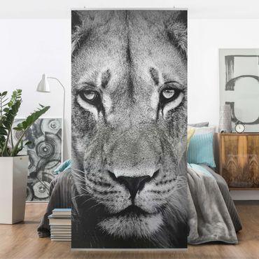 Tenda a pannello Old lion 250x120cm
