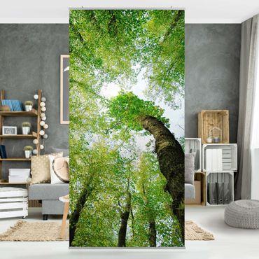 Tenda a pannello Tree of Life 250x120cm