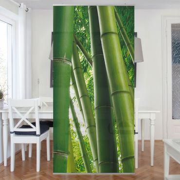 Tenda a pannello Bamboo Trees No.1 250x120cm