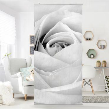 Tenda a pannello Rose Close Up 250x120cm