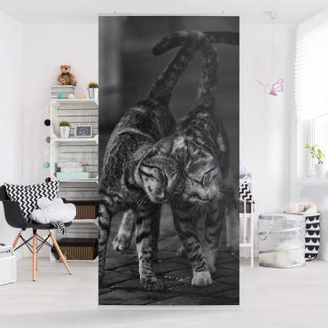 Tenda a pannello - kitten Amicizia - 250x120cm
