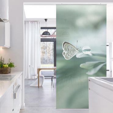 Tenda a pannello - Farfalla E Gocce di rugiada In Pastel Verde - 250x120cm