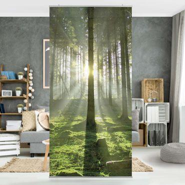 Tenda a pannello Spring Fairytale 250x120cm