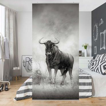 Tenda a pannello Staring Wildebeest 250x120cm