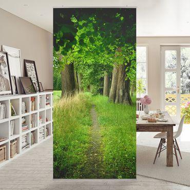 Tenda a pannello alberi - Luce nascosta nel sentiero - 250x120cm