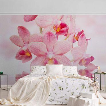 Carta da parati metallizzata - Orchidee rosa sull'acqua