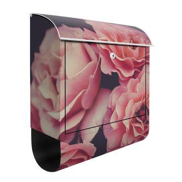 Cassetta postale - Sogno di rose