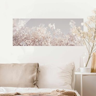 Quadro in vetro - Morbidi fiori