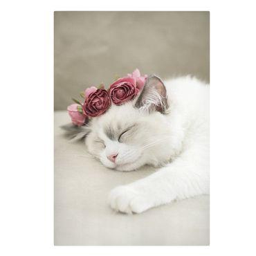 Stampa su tela - Gatto che dorme con rose