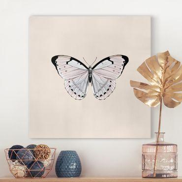 Stampa su tela - Farfalla su beige - Quadrato 1:1