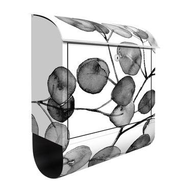 Cassetta postale - Ramo di eucalipto in acquerello bianco e nero