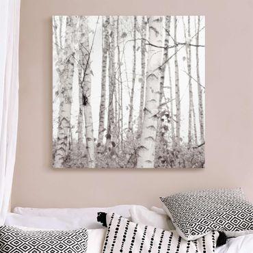 Quadro in vetro - Betulla argentata nella luce bianca