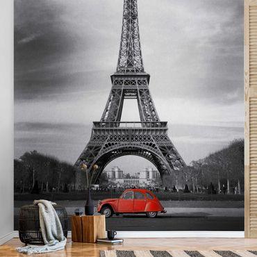 Carta da parati metallizzata - Spot on Paris