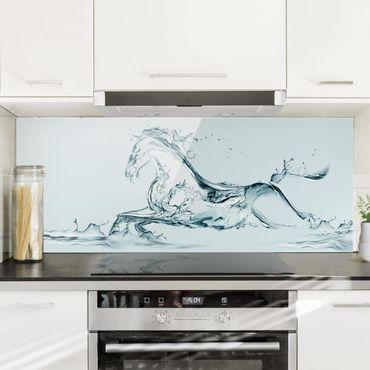Paraschizzi in vetro - Cavallo d'acqua - Panoramico