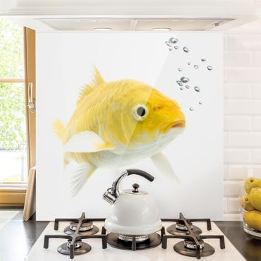 Paraschizzi in vetro - Goldfish Yellow - Quadrato 1:1