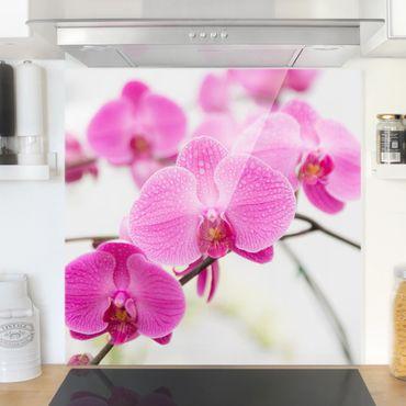 Paraschizzi in vetro - Close Orchid - Quadrato 1:1