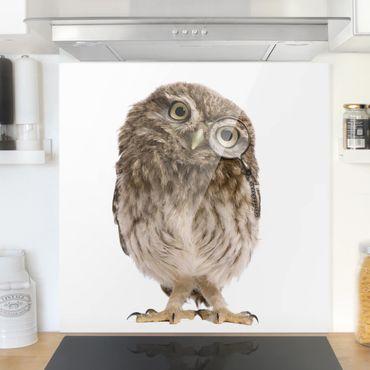 Paraschizzi in vetro - Curious Owl - Quadrato 1:1
