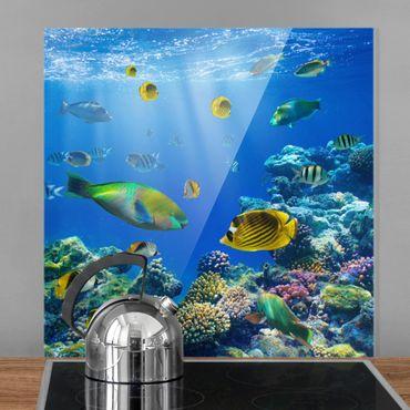 Paraschizzi in vetro - Underwater Lights - Quadrato 1:1