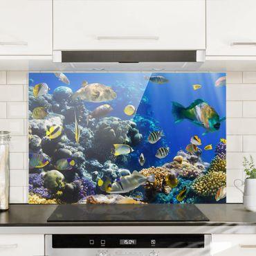 Paraschizzi in vetro - Underwater Reef - Orizzontale 2:3