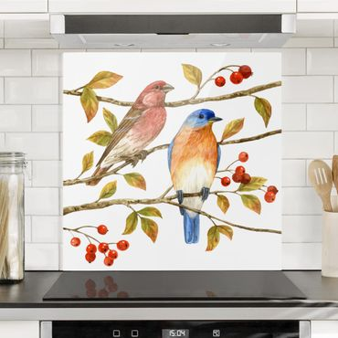 Paraschizzi in vetro - Uccelli e Bacche - Pettirosso - Quadrato 1:1
