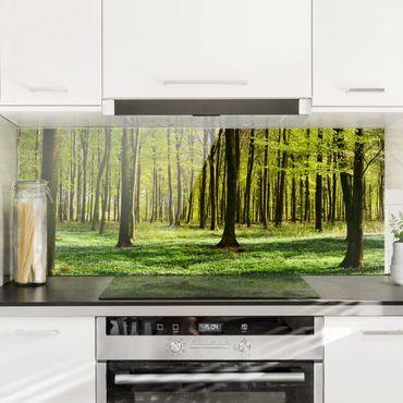 Paraschizzi in vetro - Glade - Panoramico