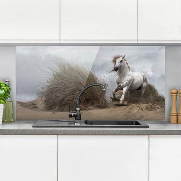 Paraschizzi in vetro - Cavallo bianco nelle Dune - Orizzontale 1:2