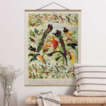 Foto su tessuto da parete con bastone - Uccelli da tavolo d'epoca del paradiso - Verticale 4:3