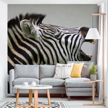 Carta da parati - Rawling Zebra