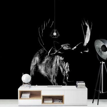 Carta da parati - Bull In The Dark