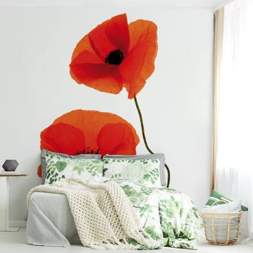 Carta da parati - Charming Poppies