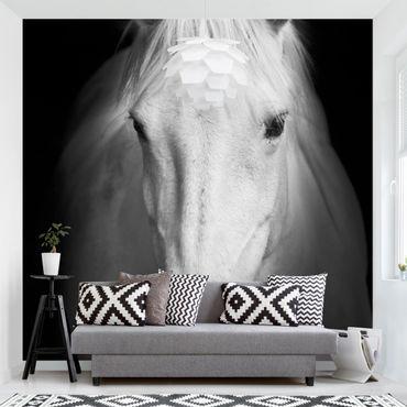 Carta da parati - Sogno Di Un Cavallo