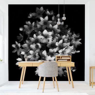 Carta da parati - Bouquet di fiori su nero
