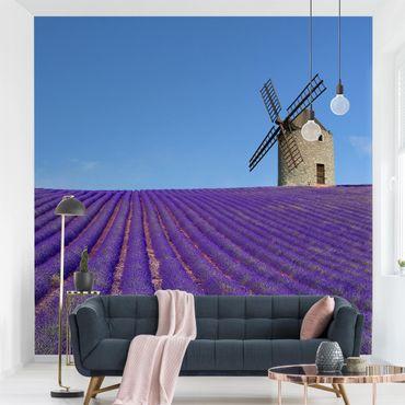 Carta da parati - The Scent Of Lavender In The Provence