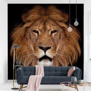 Carta da parati - Lion face