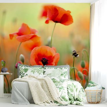 Carta da parati - Red Summer Poppy