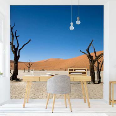 Carta da parati - Sossusvlei Namibia