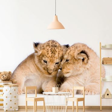 Carta da parati - Two Lion baby