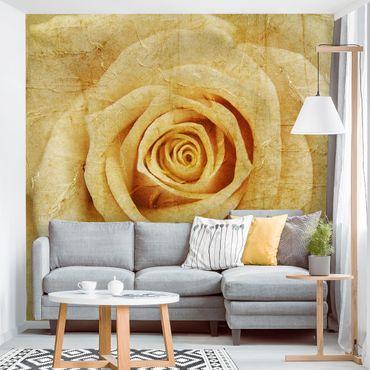 Carta da parati - Vintage Rose