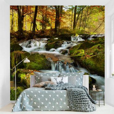 Carta da parati - Waterfall autumnal forest