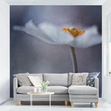Carta da parati - Anemone Fiore bianco