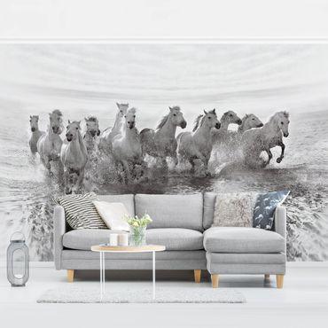 Carta da parati - Cavalli bianchi nel Mare