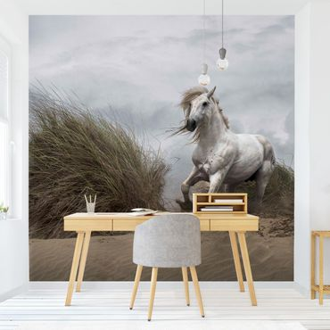 Carta da parati - Cavallo bianco nelle Dune