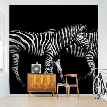 Carta da parati - Zebra al buio