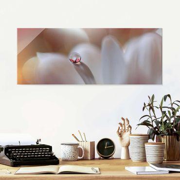 Quadro in vetro - Goccia di rugiada su fiore rosa