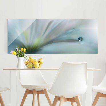 Quadro in vetro - Goccia di rugiada su fiore bianco