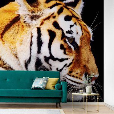 Carta da parati metallizzata - Bellezza della tigre